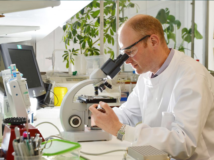 A collaborative approach to UK pharmaceutical discovery & development